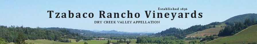 Tzabaco Rancho Vineyards