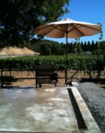 Tzabaco Rancho Vineyards Upper Crush Pad in Newsletter